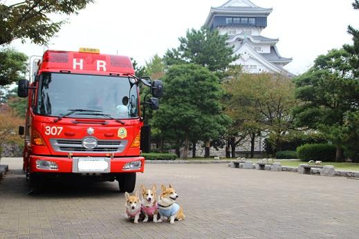 小倉散歩 2014-11-8-2