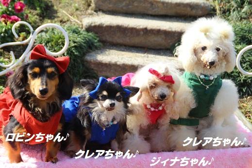 かしいかえん 撮影編 2014-11-15-7