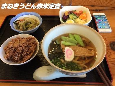 まねき猫 2014ー11-15-2