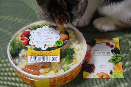 まねき猫 2014-11-15-5