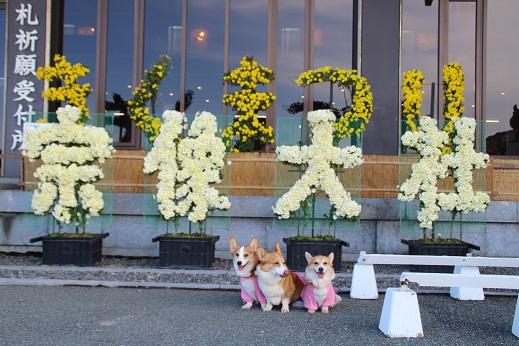 小倉に寄り道 2014-11-15-1