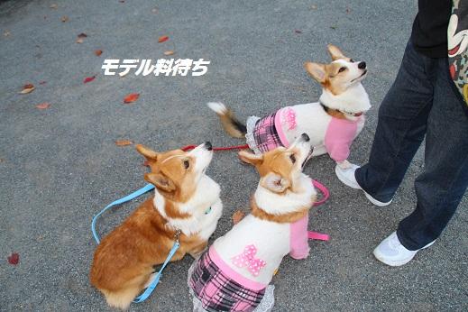 小倉に寄り道 2014-11-15-9