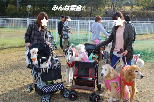 久山 2014-11-23-4