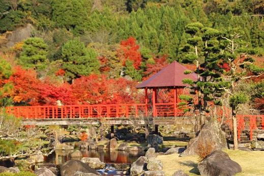 渓石園1 2014-11-19-10