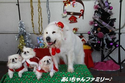 ゆめタウン1 2014-12-14-1