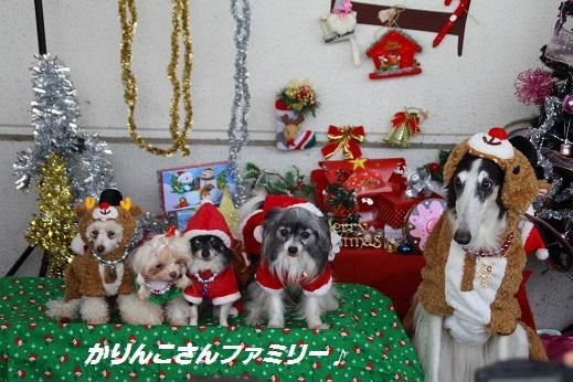 ゆめタウン1 2014-12-14-2