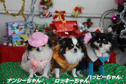 ゆめタウン1 2014-12-14-4