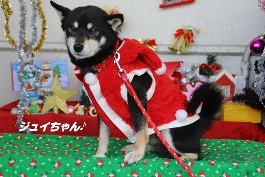 ゆめタウン1 2014-12-14-10