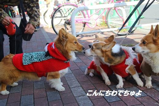 ゆめタウン2 2014-12-14-1