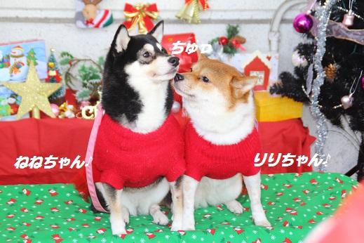 ゆめタウン2 2014-12-14-7