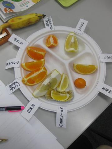 柑橘類食べ比べ329