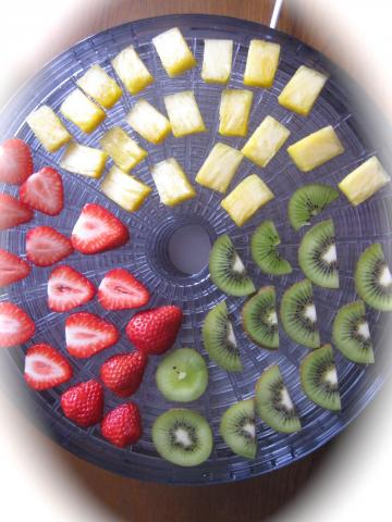 干し果物421
