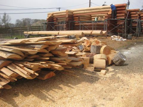 ログの木の残り519