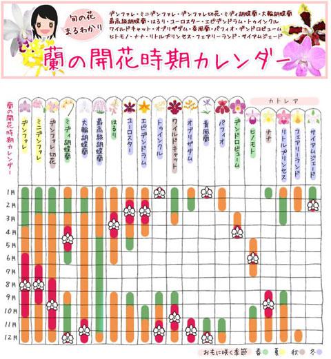 洋ランカレンダー