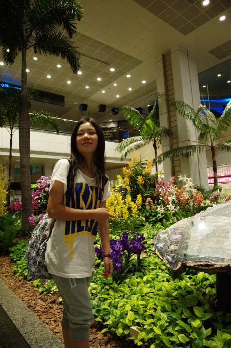 110826_CHANGI AIRPORT(Garden)