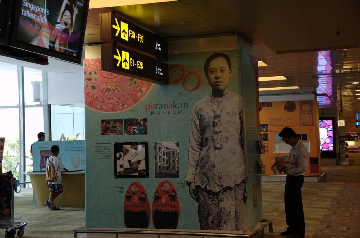 110826_CHANGI AIRPORT-1
