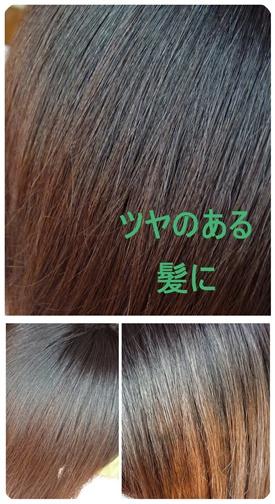 P1120288-vert.jpg
