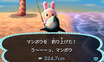 20121112190118.jpg