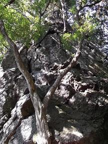 西の松島登り2014.10
