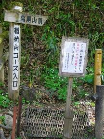 高尾稲荷2013.4