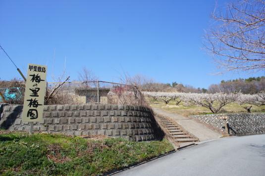 梅の花 矢木羽湖公園 外観