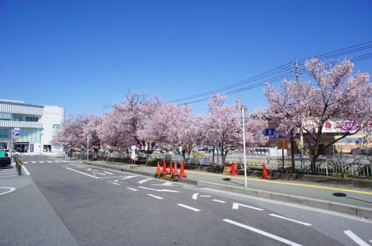 桜 韮崎駅前 外観