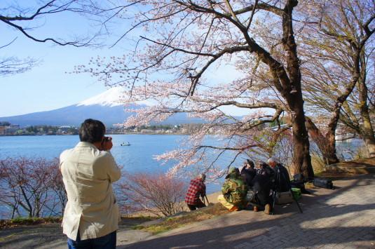 桜 産屋が崎 場所