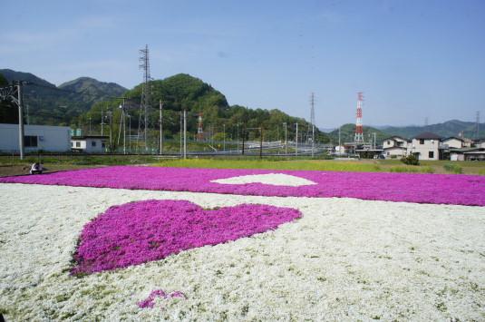 ハートの芝桜 外観