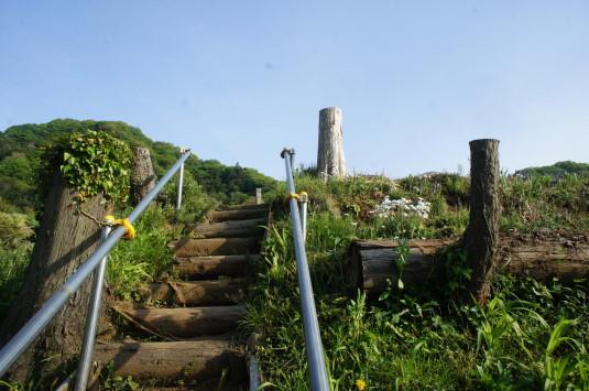 芝桜 大月 階段