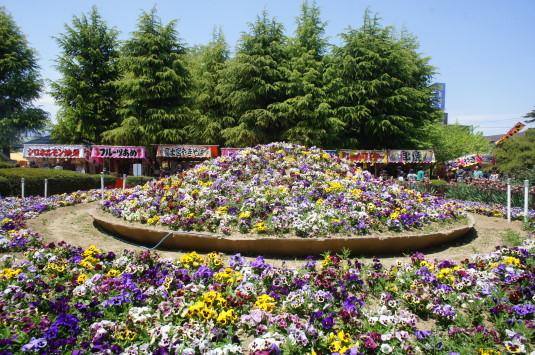 正ノ木祭り 花と屋台