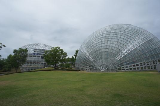 フルーツ公園 さくらんぼの日 場所