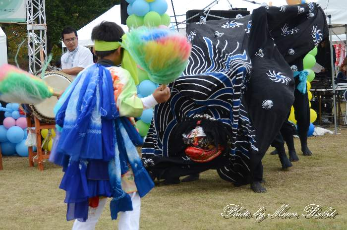 西条市合併10周年記念パフォーマンスLIVE 愛媛県西条市周布