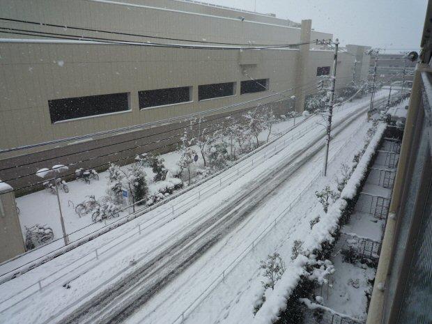 雪2P1030439