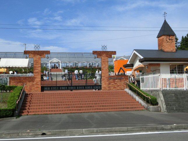 島田ばらの丘公園CIMG0403