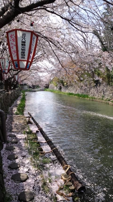 八幡堀2013
