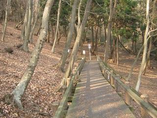 mikamoyama140201-222.jpg
