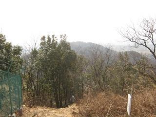 mikamoyama140201-240.jpg
