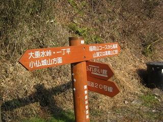 takao140113-250.jpg