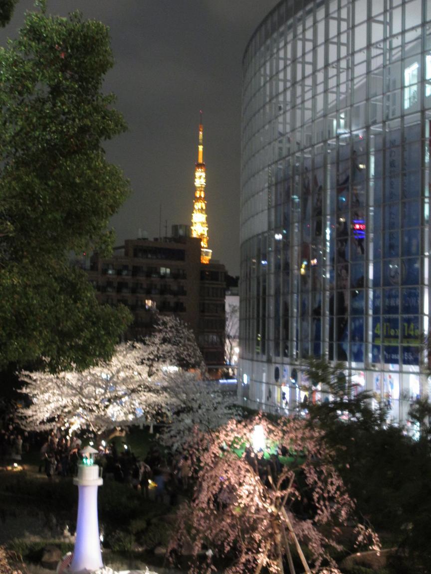 夜桜 東京タワー