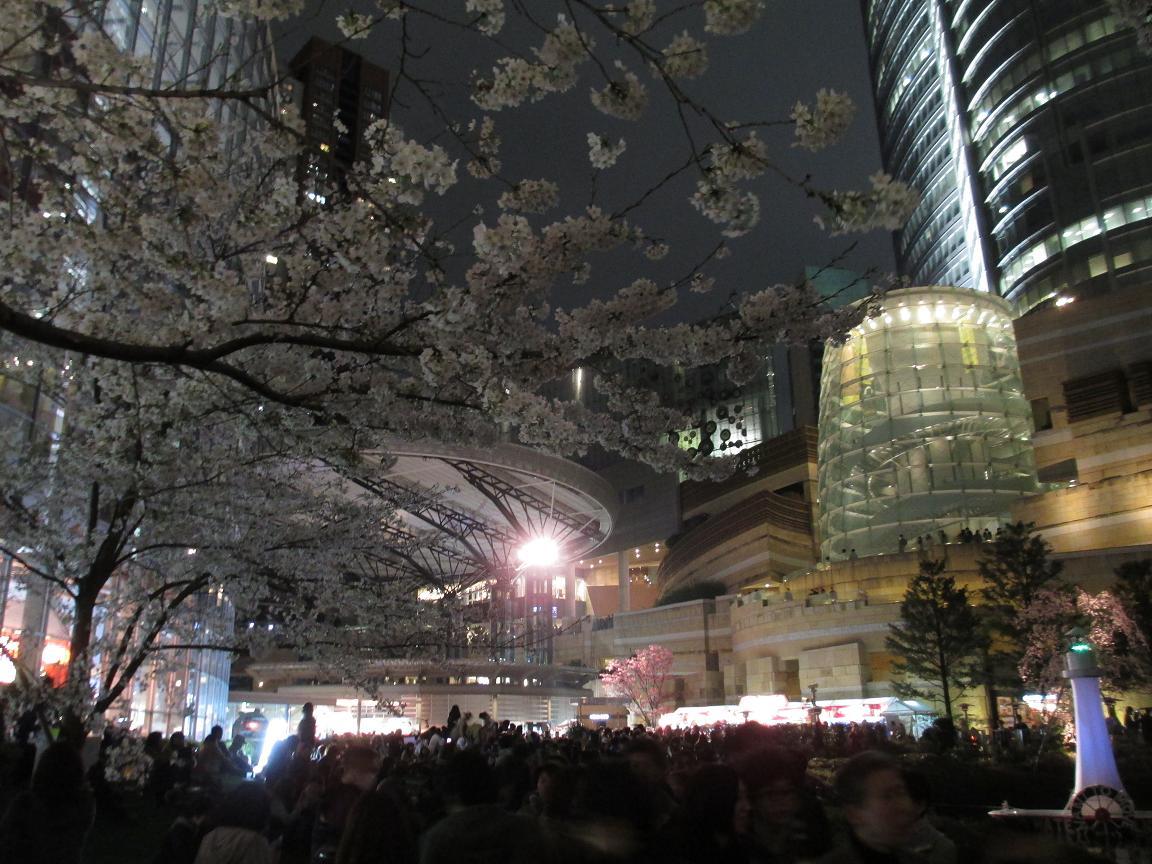 夜桜 テレ朝
