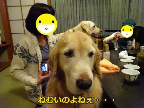 s-DSC04145.jpg