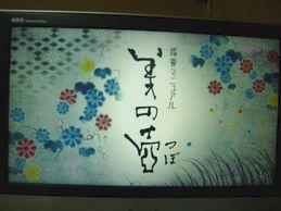 binotsubo_asa_201208-5_01s.jpg