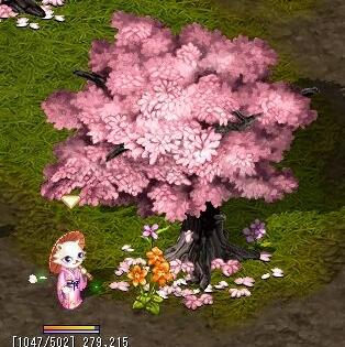 329桜祭り