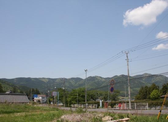 IMG_7251s.jpg