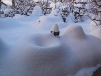 H260209筧の大雪