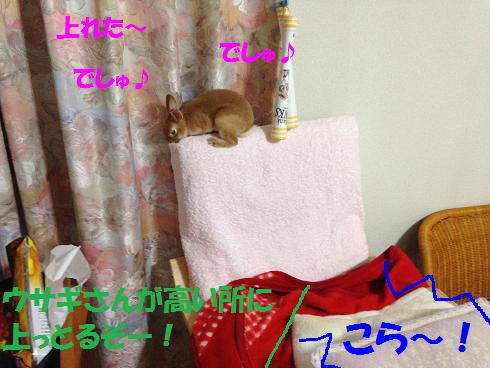 IMG_3438.上る