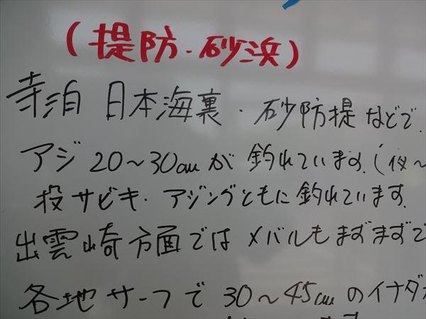 DSC03027_R.jpg