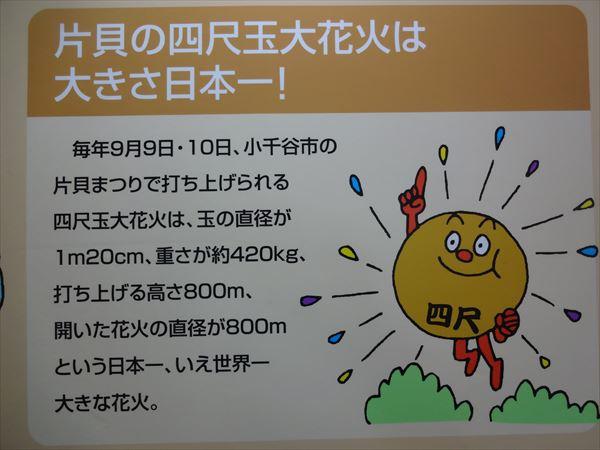 DSC03063_R.jpg
