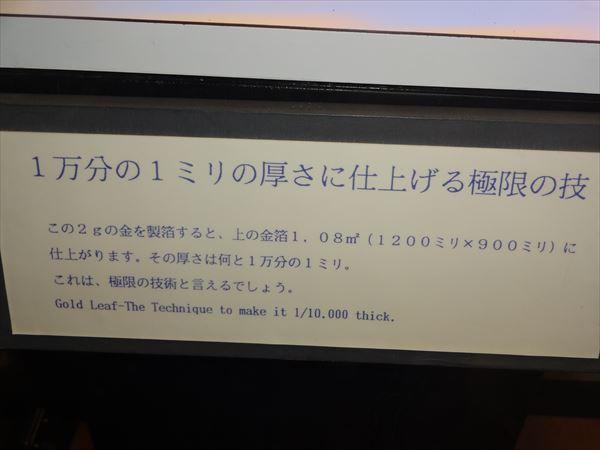 DSC03361_R.jpg