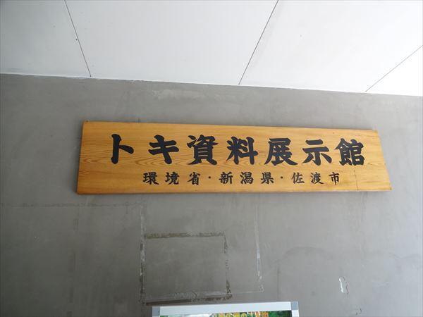 DSC03596_R.jpg
